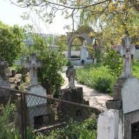 Dărăști-Ilfov - Parcela cu cruci – Morminte cenotaf 1916-1918